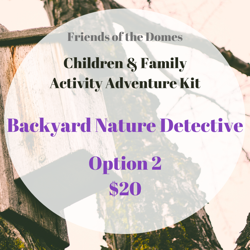 Activity Kit: Backyard Nature Detective, Option 2