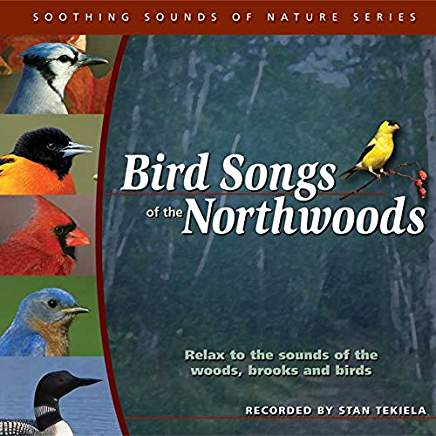 Bird Songs of the Northwoods - CD