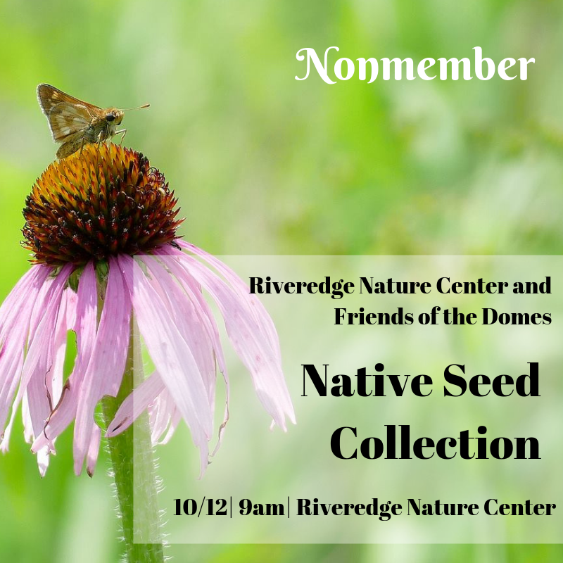 Nonmember: Native Seed Collection