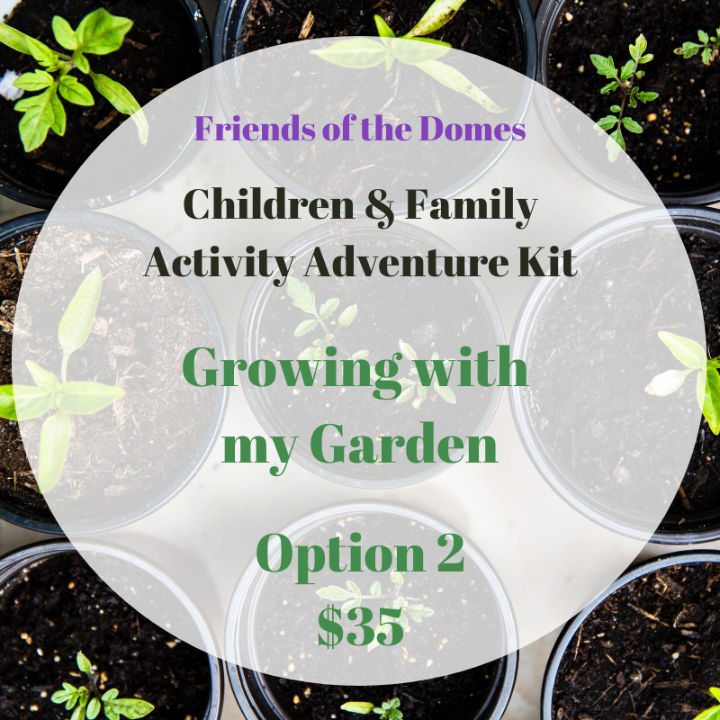 Activity Kit: Growing With My Garden, Option 2