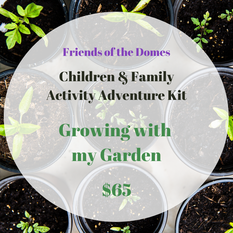 Activity Kit: Growing With My Garden