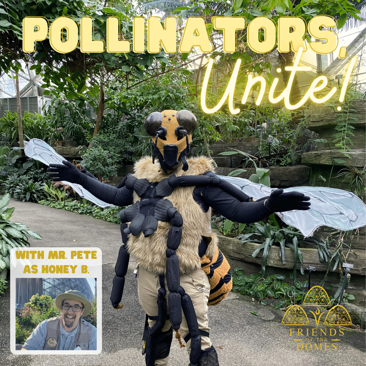 Pollinators, Unite! Virtual Program