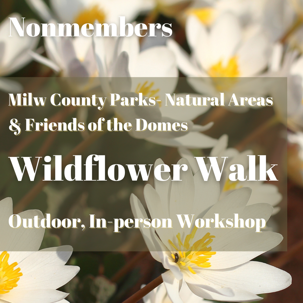 Nonmembers: Wildflower Walk